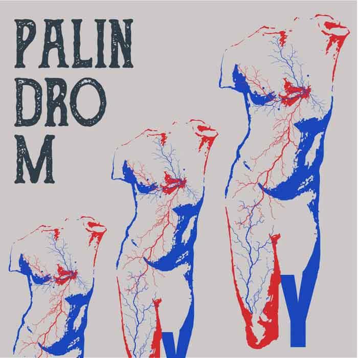 Palindrom – Desert Y